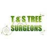 T & S Tree Surgery