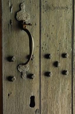 0101 Ancient Door