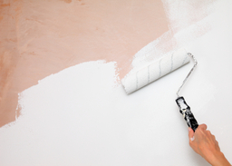 From DIY to home improvements
