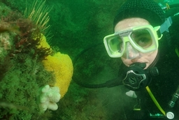 One Of Our Students Diving At Rhoscolyn