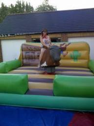 Rodeo bull on hire in St Helens