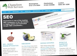 Chameleon Web Design and SEO Company