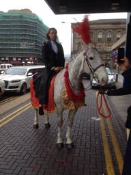 Our Indian wedding Horse in Newcastle