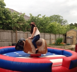 Rodeo bull from £200 2hr hire then £25 per hour after that