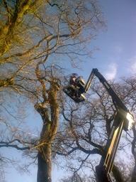 Using a hoist