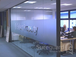 Window Films with etched design
