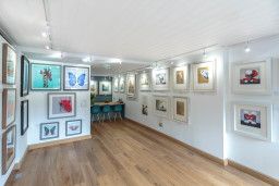 front area of gallery