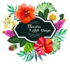 Flowers & Gifts Designs