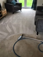 Clean Our Carpets