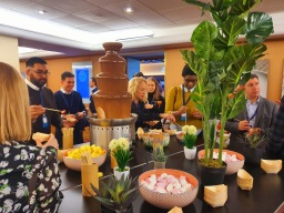 Chocolate fountain hire corporate aylin sweets