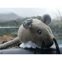 Lakeland Pest & Wildlife Services