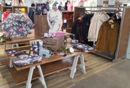 Interior shop fit for Ruxley Manor Garden Centre