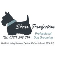 Shear Pawfection Professional Dog Grooming