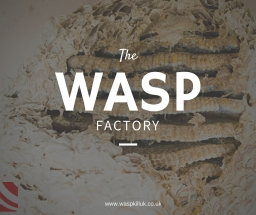 wasp control bristol