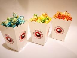 popcorn machinehire  slush candy floss sweet cart