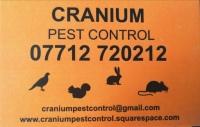 Cranium Pest Control & Garden Maintenance