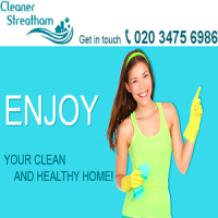 Domestic Cleaner Streatham