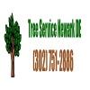 Newark DE Tree Service