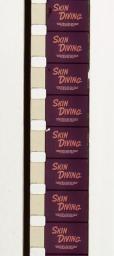 Standard 8 mm cine film, note larger sprocket holes & smaller image area