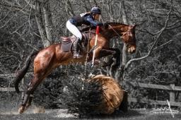 Equestrian Photography by Simon Bratt in Norfolk