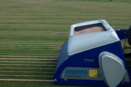 Sancat introduces sand to root system