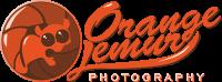 Orange Lemur Photography