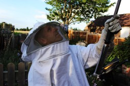 wasp control doncaster