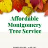 Affordable Montgomery Tree Service