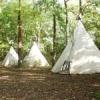 Hollybush Camping