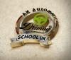Ak Automatic Driving School brighton & Hove.