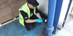 Pest Solutions Glasgow Pest Control Inspection 3