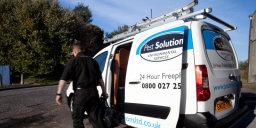 Pest Control Glasgow 8 Pest Solutions