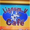 Lignum Caribbean cafe