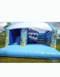 Shark slide combo bouncy castle from Kingdom of Bounce