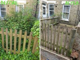 Overgrown Garden Clearance North London