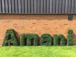 bespoke hedge lettering services from Hedged In