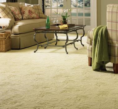 Restoration Carpet Cleaning 22 Oak Street Farmington Mn