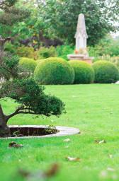Lawn Care / Gardening Basingstoke