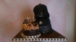 Special Birthday cake designs