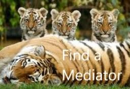 Find A Mediator