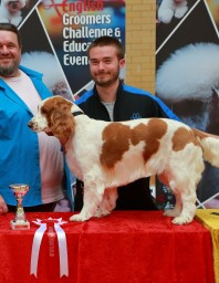 Winning first prize in the gundog category at Engl