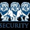 3 Lions Security Ltd