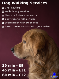 Dog Walker - Services