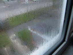 Mullingar Westmeath Glass & Glazing Condensation