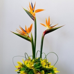 Corporate Flowers Nottingham