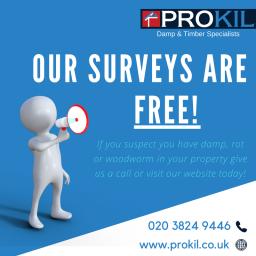 Prokil London Kensington, Free Survey