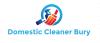 Domestic Cleaner Bury