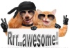 Rrr.awesome! Raw Pet Food Cumbernauld
