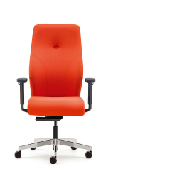 Posture Office Chair