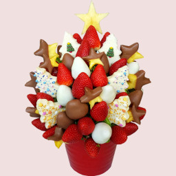 Magical Christmas Fruit Bouquet